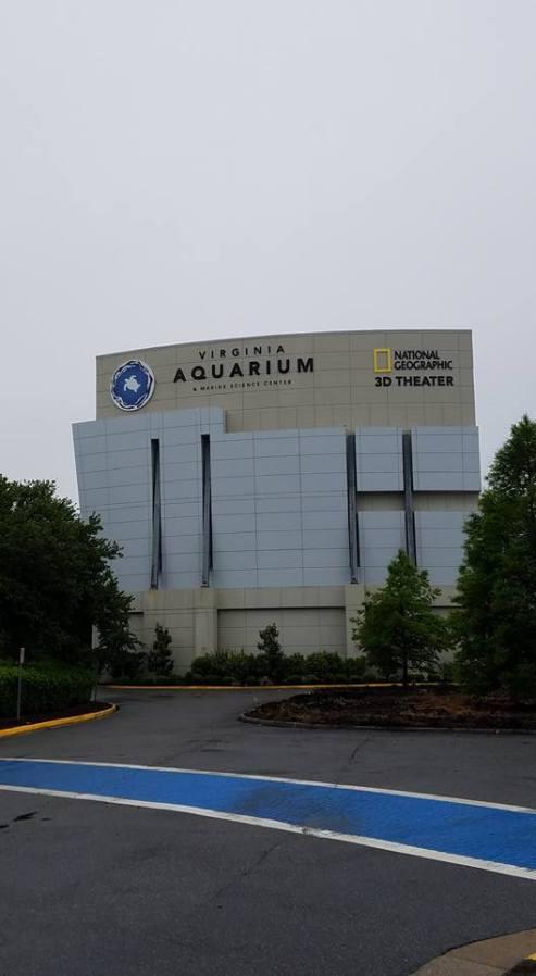 Travel Diary Virginia Beach Aquarium Makeupateers
